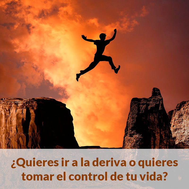 Life Training Consulta Sergio Saiz